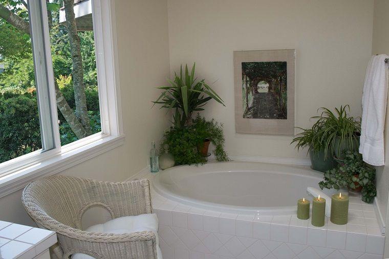 Piante per interni bordi vasca bagno decorazioni in