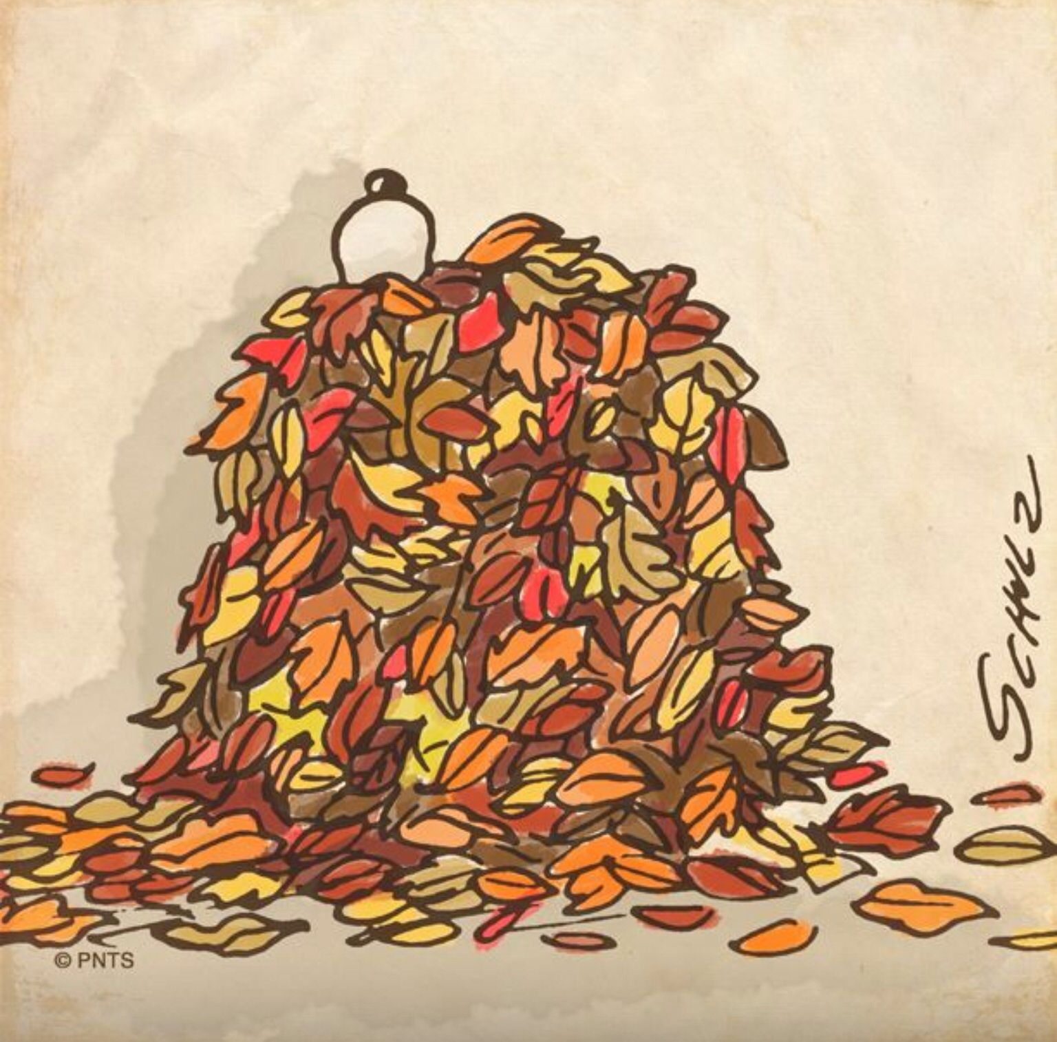 Snoopy In A Leaf Pile Snoopy Love Charlie Brown Charlie Brown And Snoopy