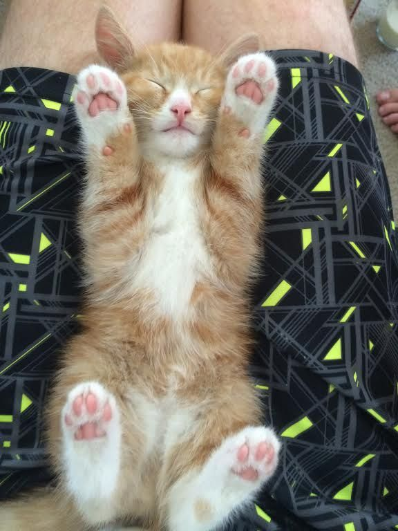 Look at his little jellybean toes!