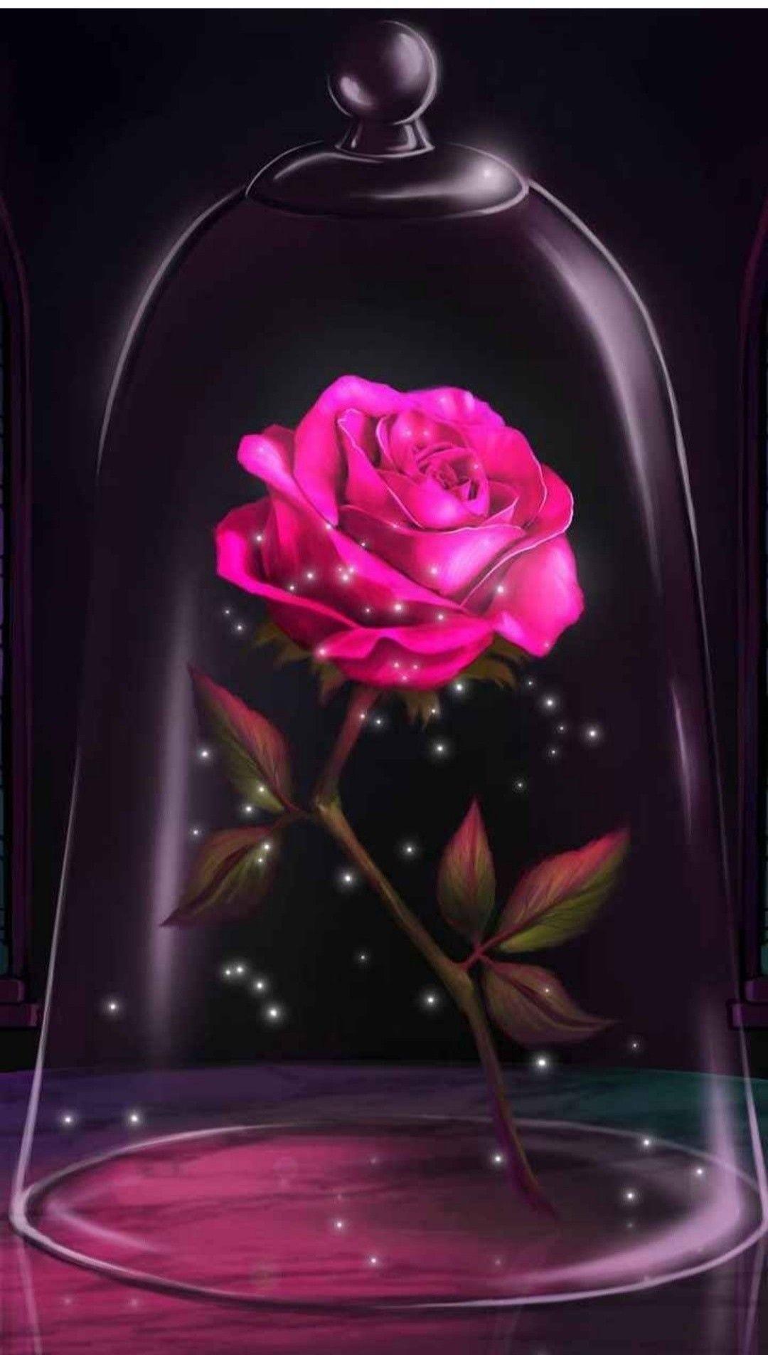 Pin By Nana On Rose Rose Wallpaper Enchanted Rose Beast Wallpaper