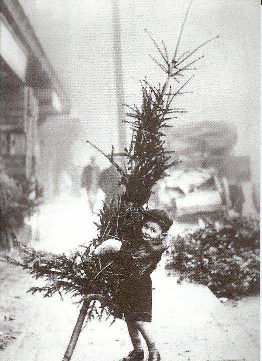 vintage Christmas tree.