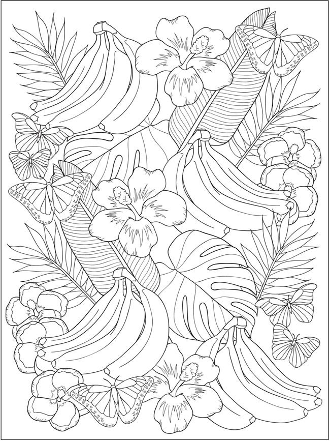welcome to dover publications ch truly tropical coloring