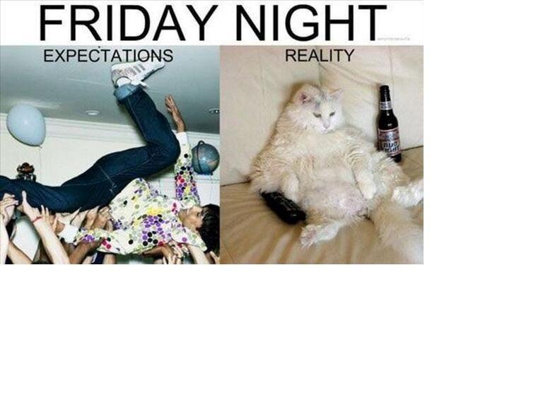 Funny Friday Night Meme : Friday night f.it thursday pinterest