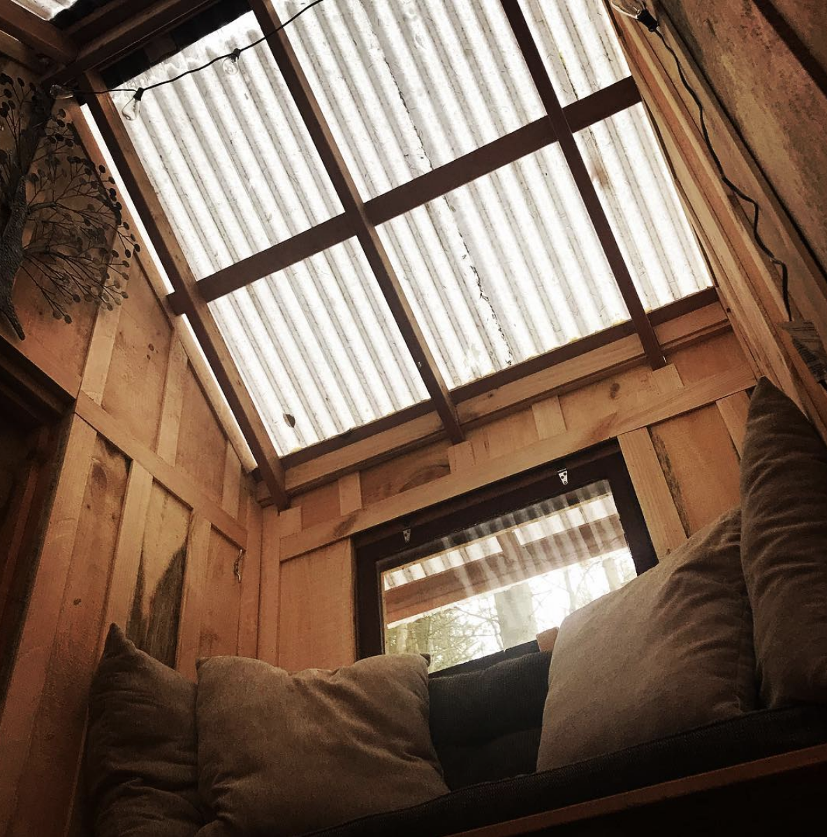 The view in the second story of Goodall's treehouse cabin here at #Wellnesste. The transparent roof is covered in snow and you can hear the creaking of the hemlocks and pines as the wind moves the treetops back and forth. Sitting here in quiet contemplation on the reading nook with a copy of #adirondacklifemagazine , a blanket and a hot cup of Earl Grey tea, we can think of nowhere else on Earth we'd rather be.  #treehousemasters #treehousetour #treehouseresort #treehouses #treehouselife #cabin