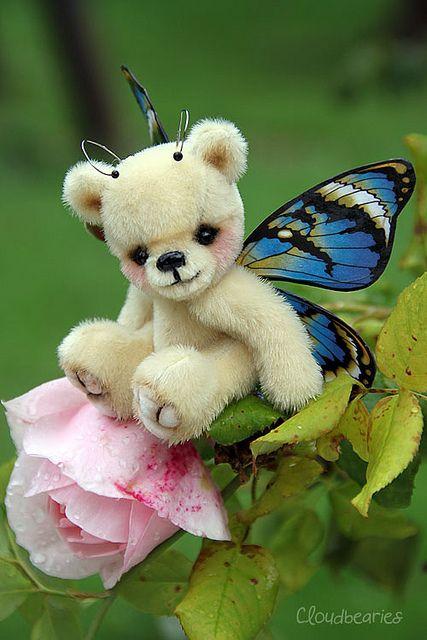 tiny butterfly bear