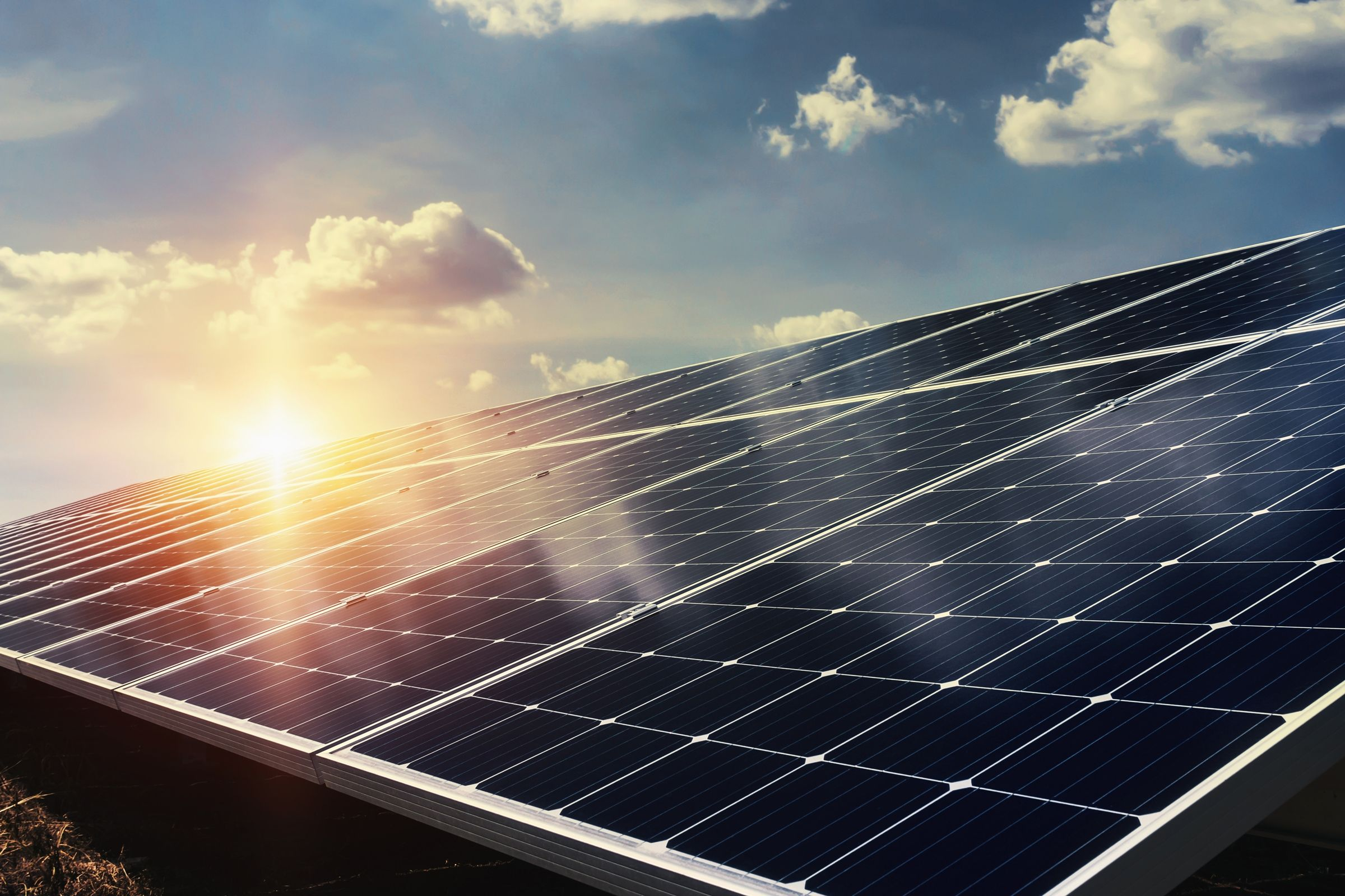 2019 Was A Busy Year Compared To All Other Energy Sources Solar Generated Electricity Enjo In 2020 Solar Panel Cost Solar Panels For Sale Renewable Sources Of Energy
