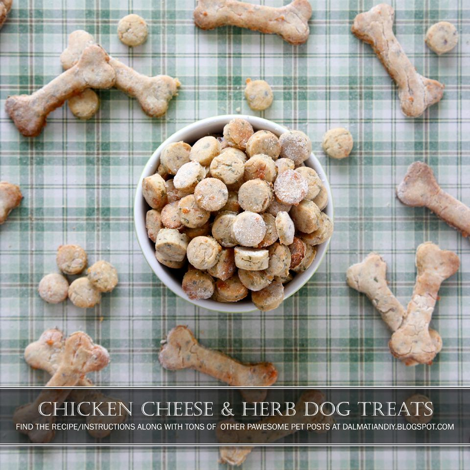 Recipe Chicken Cheese And Herb Dog Treats Dog Food Recipes