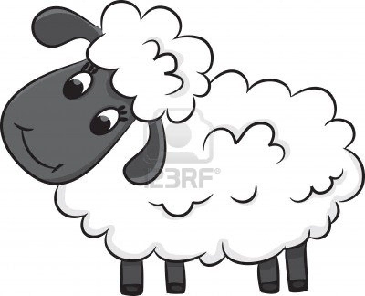 Cartoon Sheep Vector Illustration Sheep Cartoon Sheep Vector Sheep Drawing