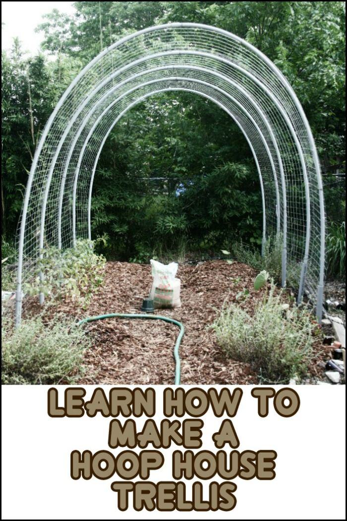 Diy Hoop House Trellis With Images Garden Trellis Designs