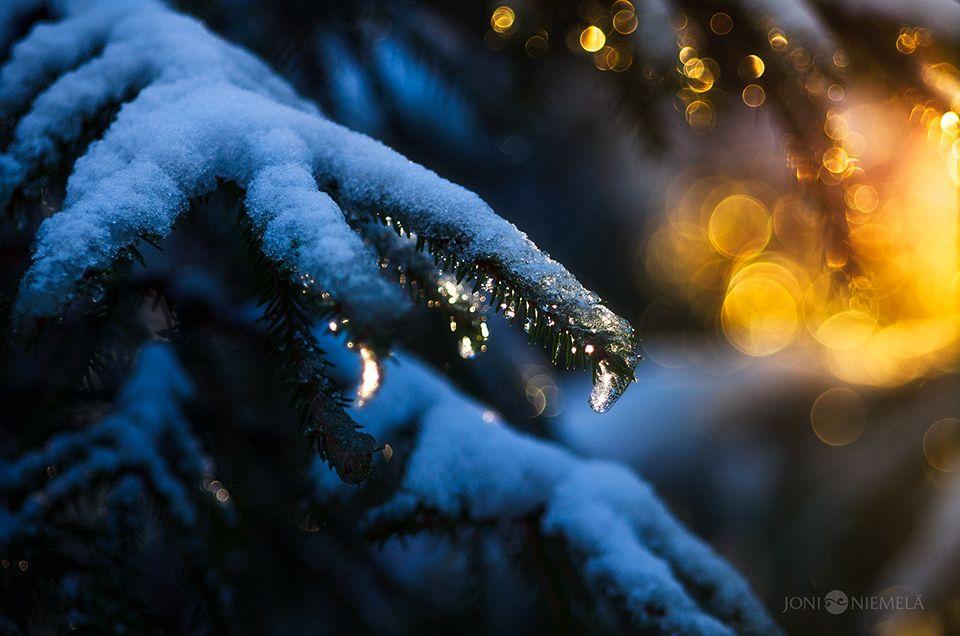 Spring And Winter by JoniNiemela on DeviantArt