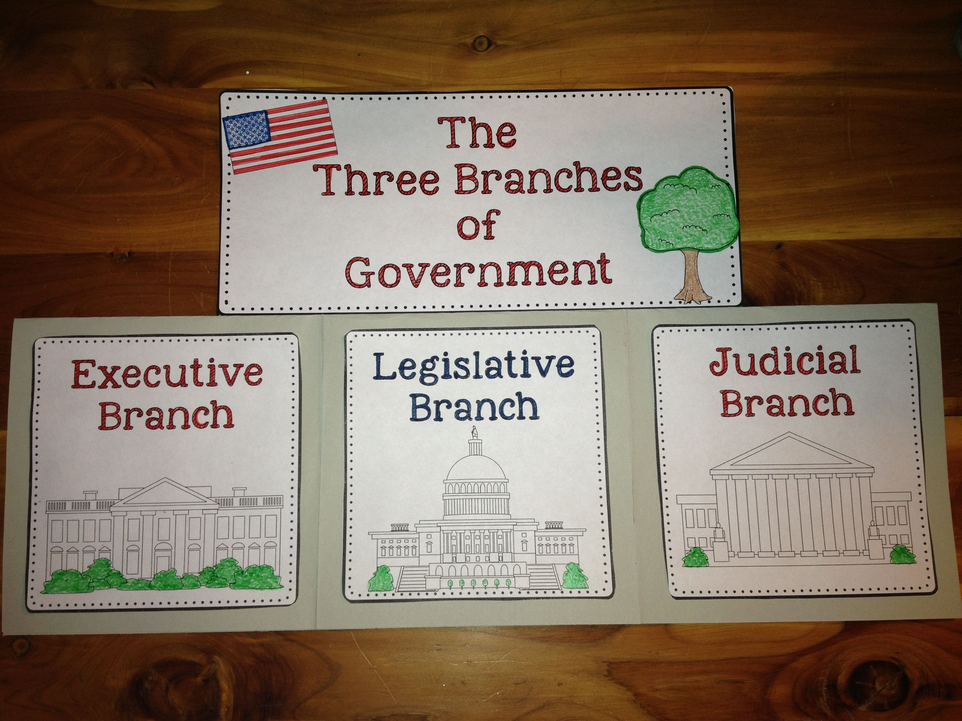 the three branches of government essay 250000 free 3 branches of government papers & 3 branches of government essays at #1 essays bank since 1998 biggest and the best essays bank 3 branches of in the paragraphs below i will discuss their reason for dividing the government, the three branches and how the three branches interact three branches in 1787.