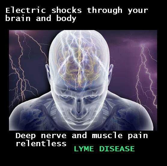Lyme Disease -  how cannabis helps: http://www.naturalnews.com/043834_cannabis_Lyme_disease_medical_marijuana.html