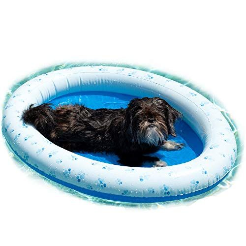 Poolcandy Inflatable Pet Float Swimming Pool Raft Float For Small Dogs Inflatable Pet Paddle Doggy Pool Float In 2020 Puppy Pool Dog Pool Dog Pool Floats