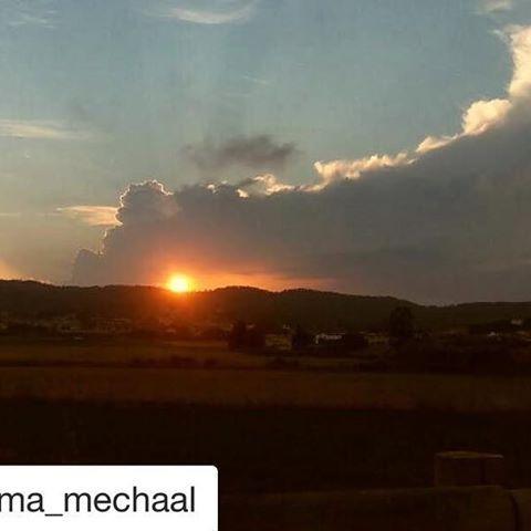 Instagram #Repost @cheyma_mechaal ・・・ Se despide o nos da los buenos dias??  #unmechaalsuenacorreylucha #Mechaala #Gorda #Palamos #naturapalamos #costabrava #palamosonline #palamós #emporda