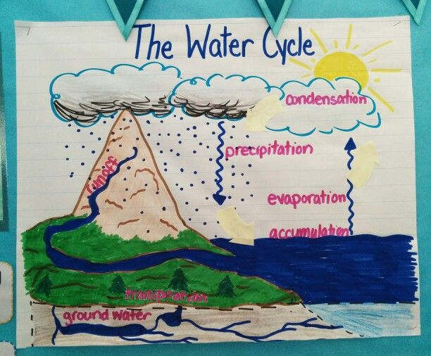 Water cycle anchor chart best my charts images on pinterest also ibovnathandedecker rh