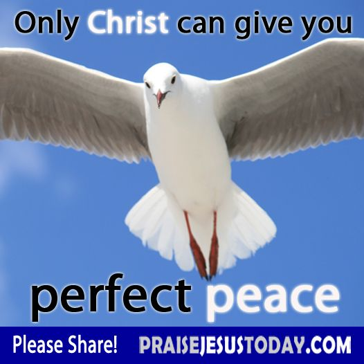 Only Christ can give you perfect peace.