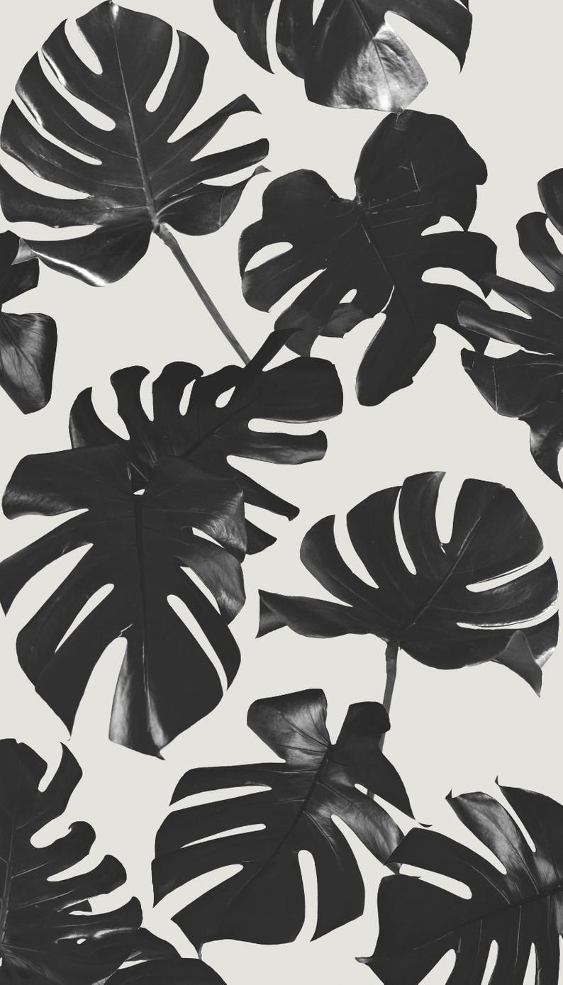 Basic Monstera Leaf Removable Fabric Wallpaper Peel Stick Cute Patterns Wallpaper Monstera Leaf Fabric Wallpaper