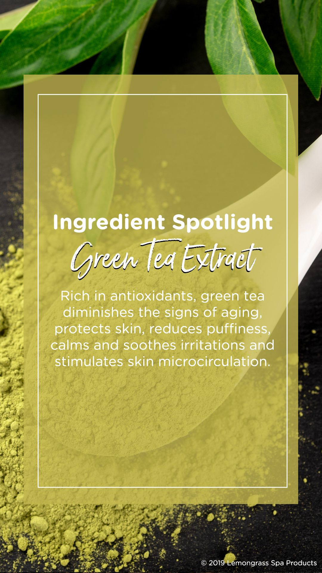 Skincare Benefits Of Green Tea Extract Lemongrass Spa Green Tea Extract Skin Protection