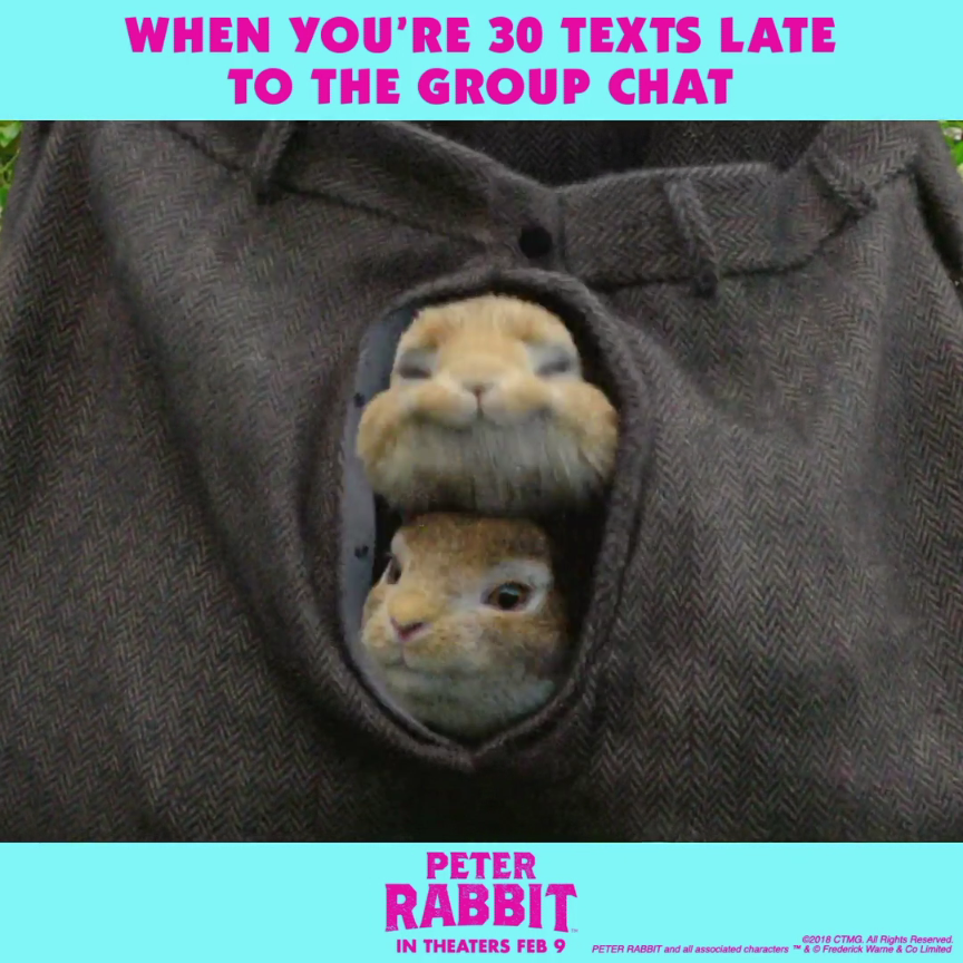 Photo of Buy Peter Rabbit Movie Tickets | Official Website | Sony Pictures