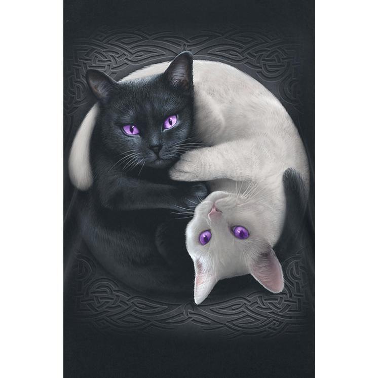 - Baumwoll-Jersey - Rundhals - Frontprint  Das Yin Yang Cats Top von Spiral ist wie gemacht für alle Katzenliebhaberinnen. Denn auf diesem Top sind im Vorderteil eine schwarze und eine weiße Katze zu finden. Die beiden rollen sich dabei zum berühmten Yin Yang Zeichen ein, das somit einmal ganz anders interpretiert wird.