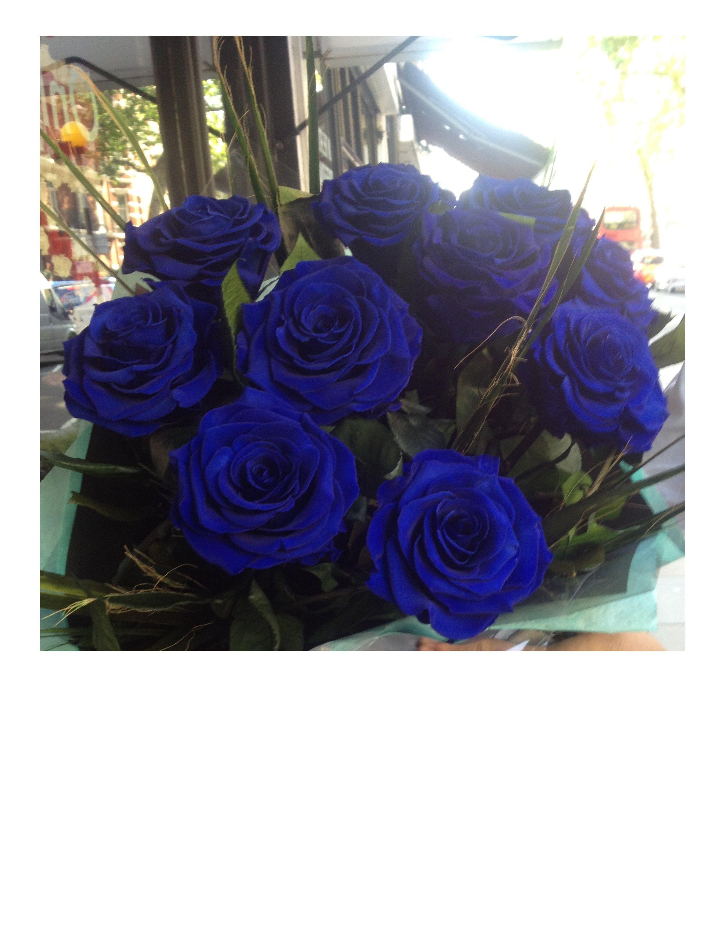 Infinite Rose Ebony Rosas Azuis Flores Azuis Coisas De Casamento