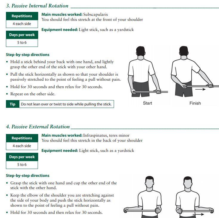 Rotator Cuff, Shoulder Joint