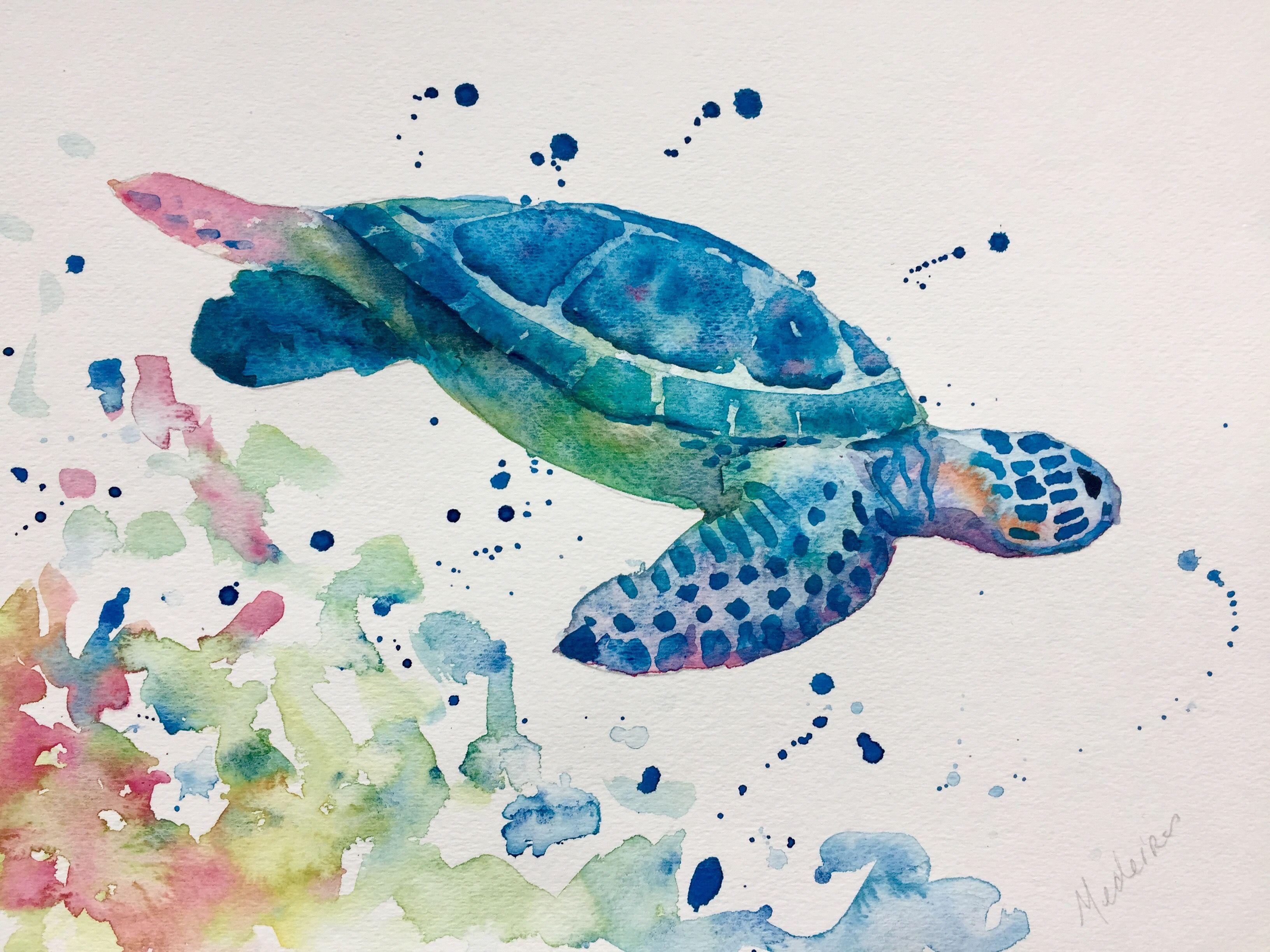 Watercolor Turtle Turtle Painting Turtle Watercolor Watercolor