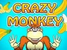 Бесплатные игровые автоматы обезьянки играть крышки гаражи игровые автоматы играть симулятор клубнички