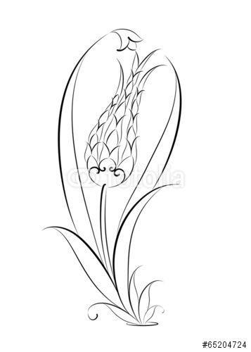 Vektor Cini Motifi Lale Deseni Illustrasyonu Desenler Tezhip Laleler