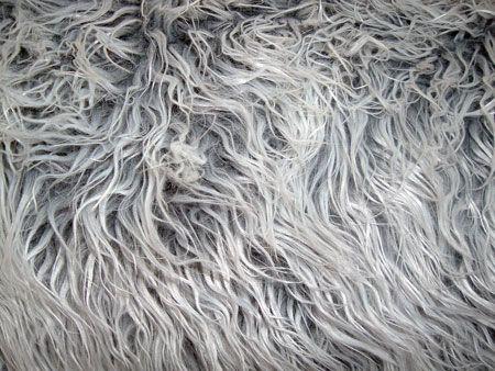 Mongolian Fur - Gray Frost Fabricdepot.com has great Mongolian fur fabric for CHEAP!