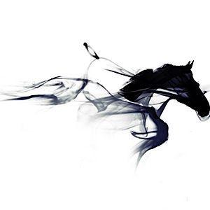 mountain horse   - Nicole Posselt -  -  mountain horse    mountain horse