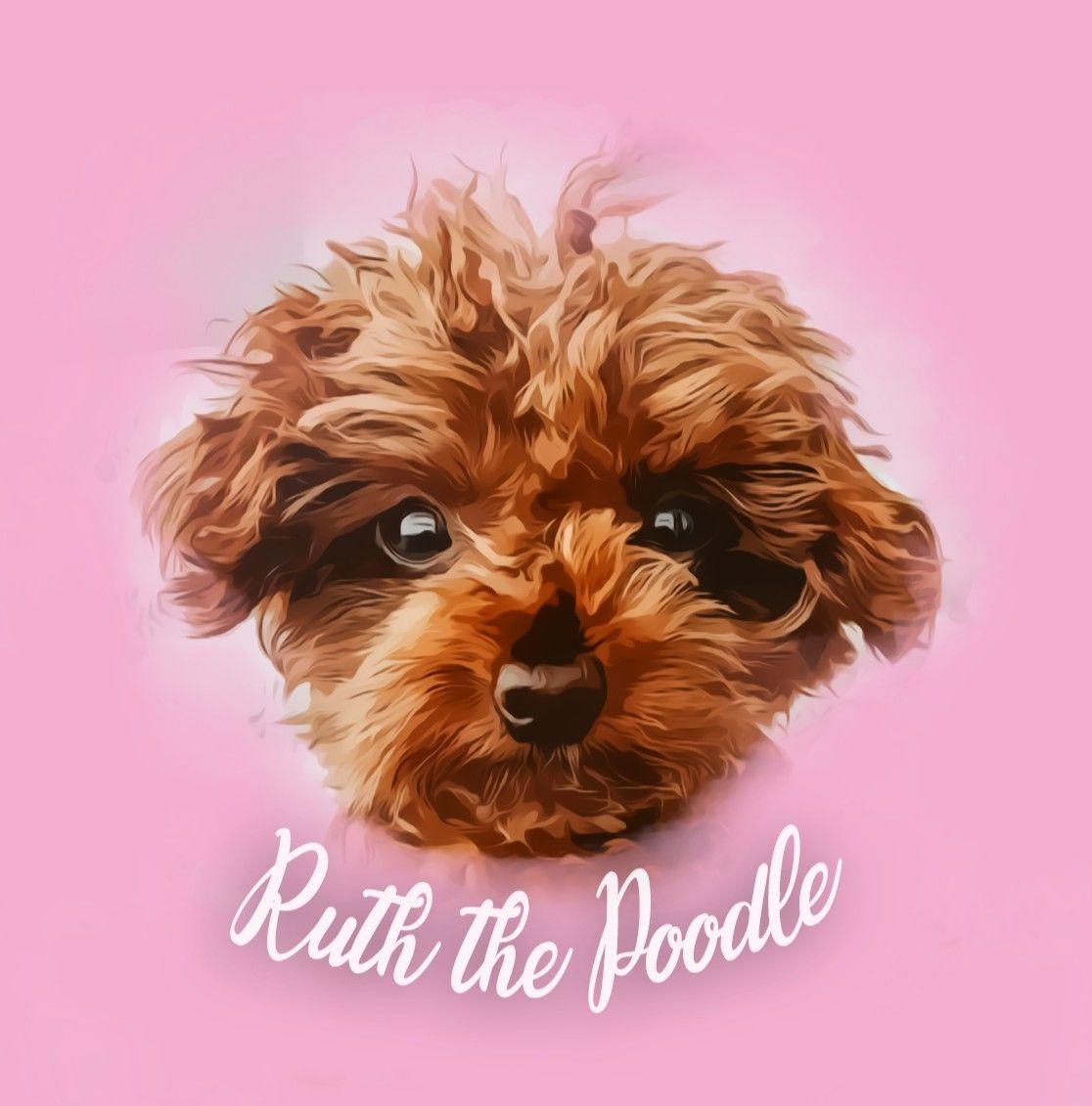 Profile Picture digital dog painting. In frame : @poodleruth • For Order Information click link in my bio. • #digitalpainting #animalpainting #petpainting #digitalart #oilpainting #profile #oilpainting #portrait #dogpainting #poodle #animallovers #photoshop #watercolor #catstagram #poodlelove #poodles #poodlesofinstagram #poodlepuppy #poodlemix #petportrait #dog #animals #doglovers