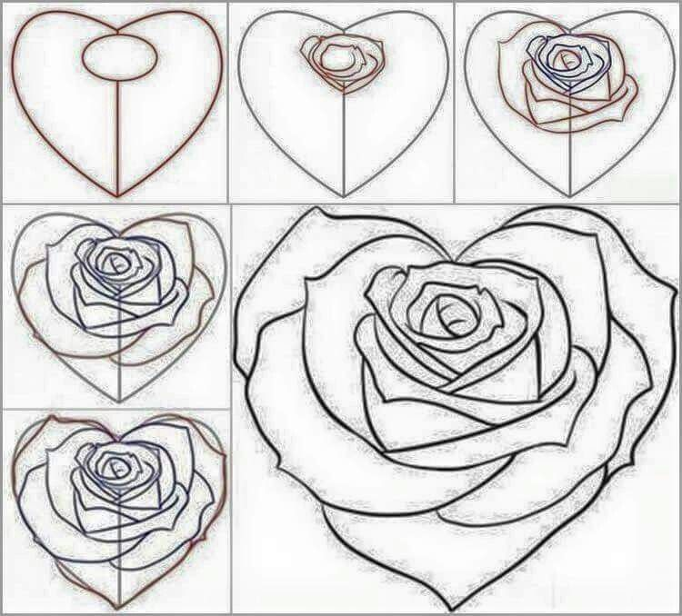 Heart Shaped Rose Roses Drawing Flower Drawing Easy Drawings