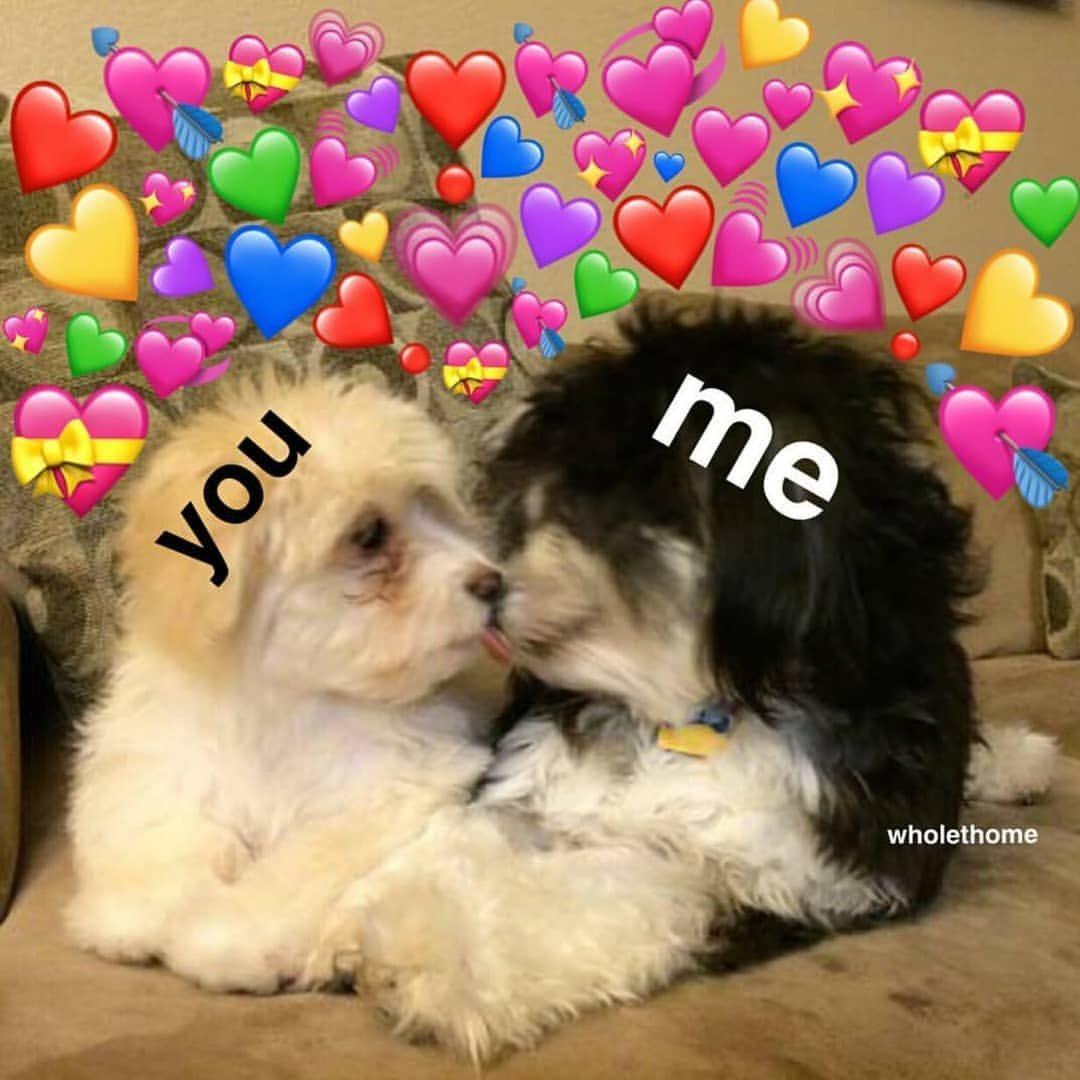 682 Otmetok Nravitsya 7 Kommentariev Saul Zaucyyy V Instagram Gm Wholesome Memes Love Memes Cute Love Memes