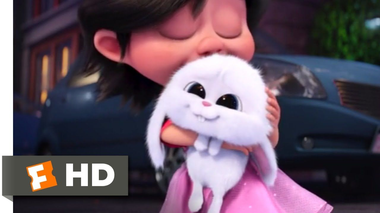 The Secret Life Of Pets Puppy And Bunny Love Fandango Family