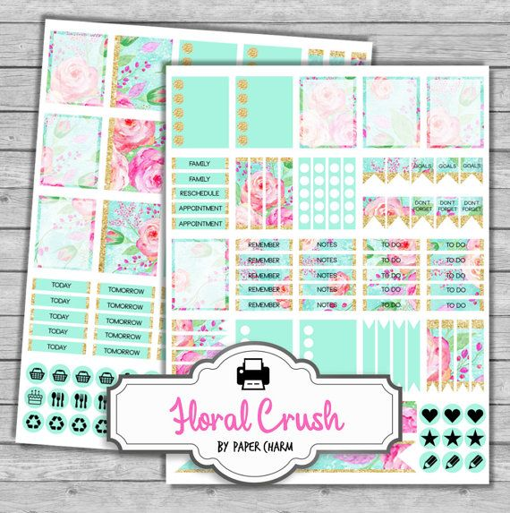 Perfect for Erin Condren Life Planners! Frosted Weekly Planner Sticker Kit