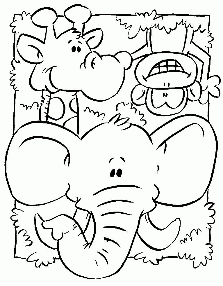 Pin By Steph Maltzahn On Preschool Zoo Animal Coloring Pages