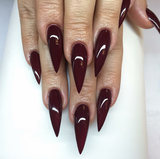 luxury nails claws perfect proportions