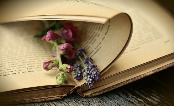 Books images · pixabay · download free pictures