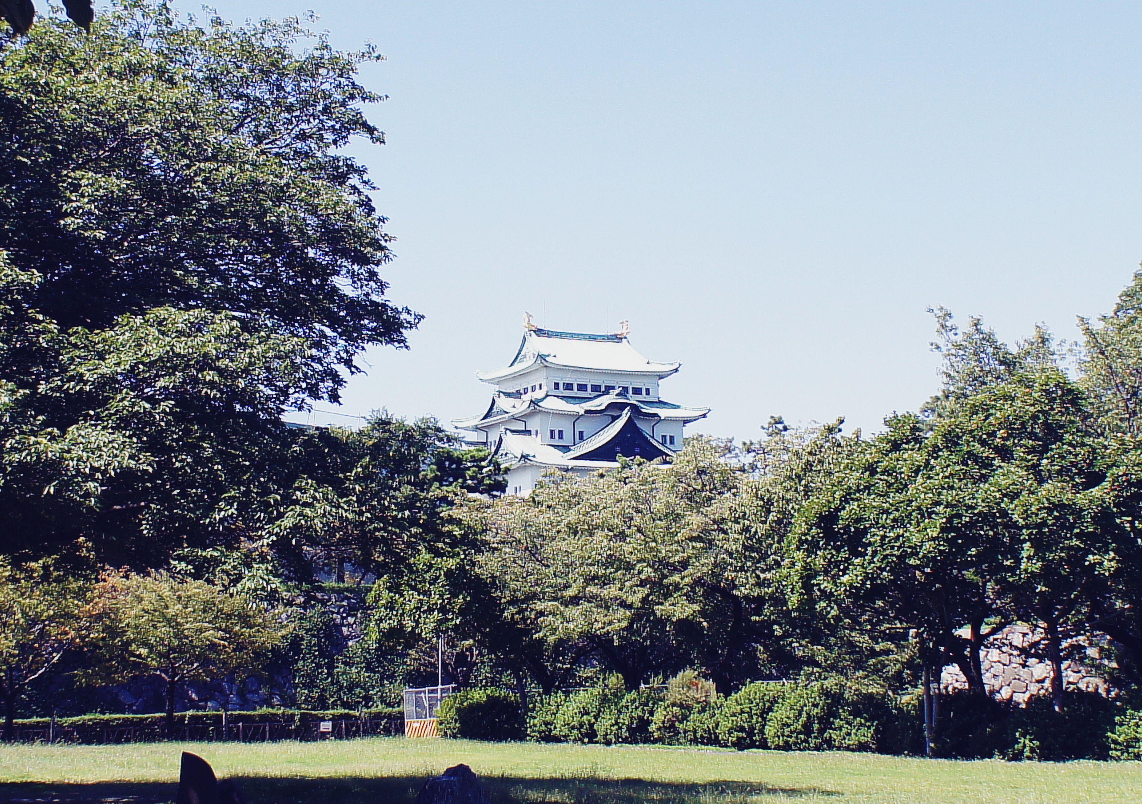 #japan #nagoya #nagoya_castle