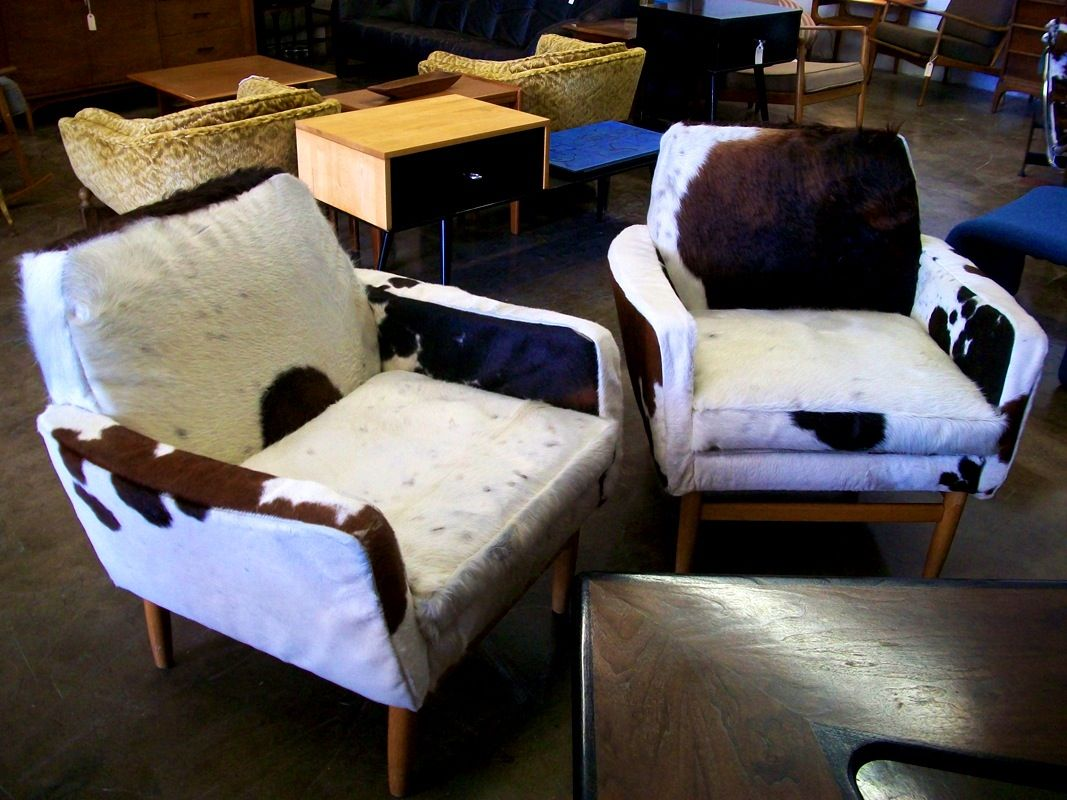 Astonishing Furniture Cool Mid Century Modern Cowhide Western Chairs For Evergreenethics Interior Chair Design Evergreenethicsorg