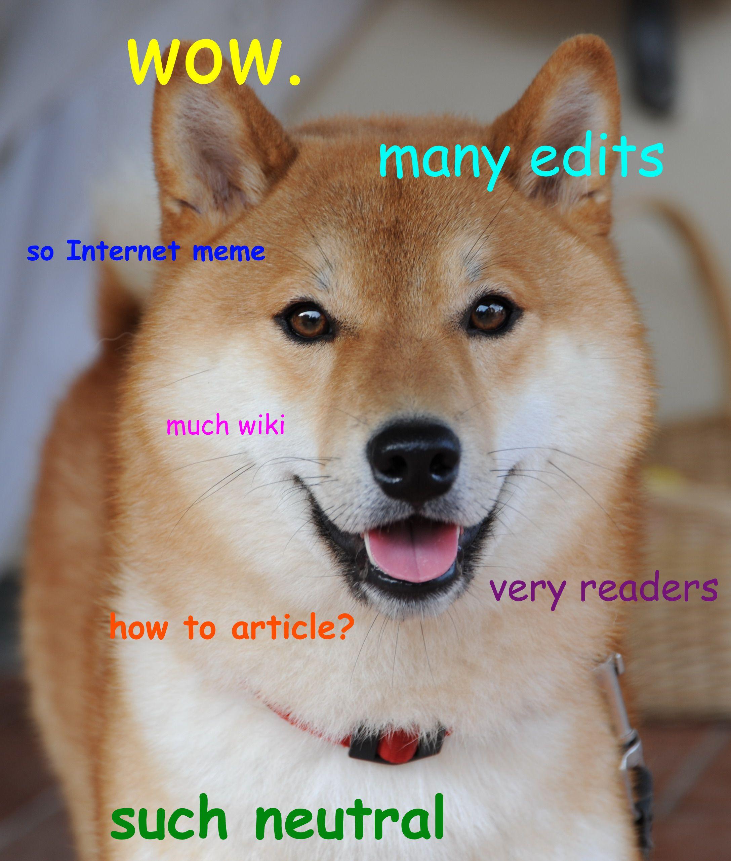 Doge Meme Google Search Doge Meme Doge Dog Bad Pun Dog