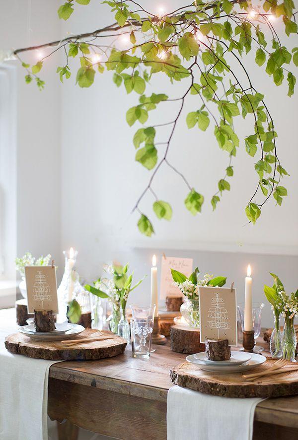 Wald Tischdekoration Indoor Garten Zimmerpflanzen Ideen Dekor