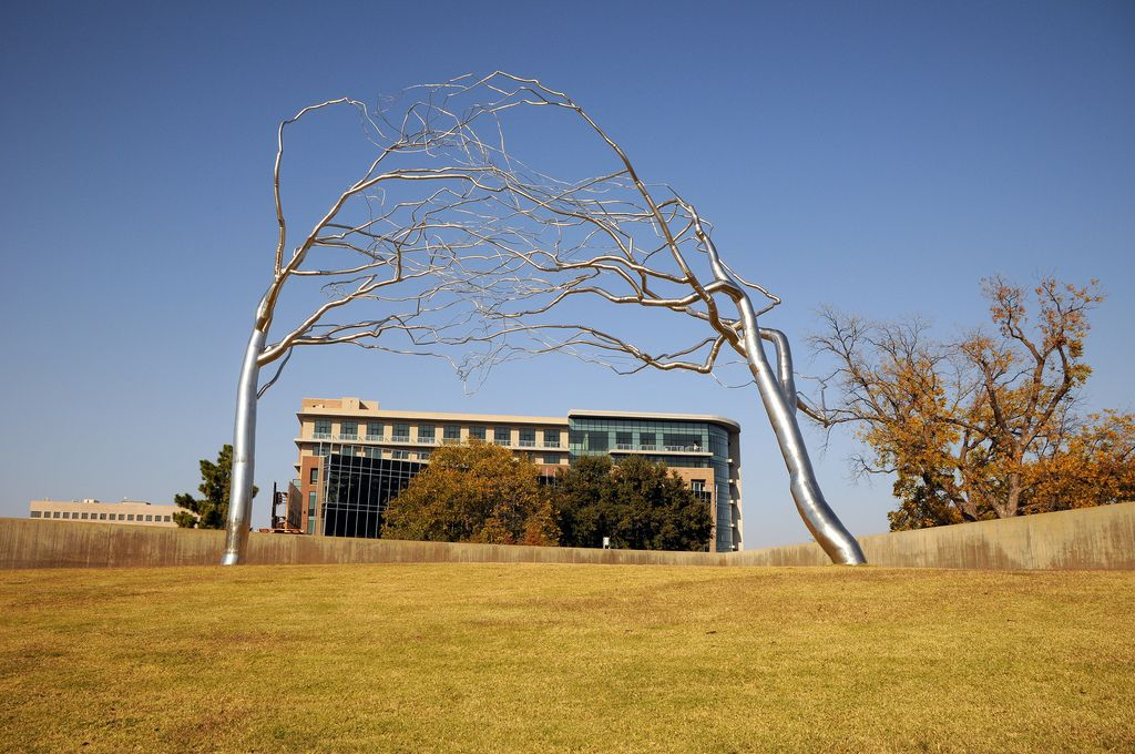 Dsc 8642 Conjoined By Roxy Payne The Modern Fort Worth Texas Art Museum Tree Stainless Steel Leafless Branches Blue Sky Lawn Entwined Sculpture Texas Art Art Museum Fort Worth Texas