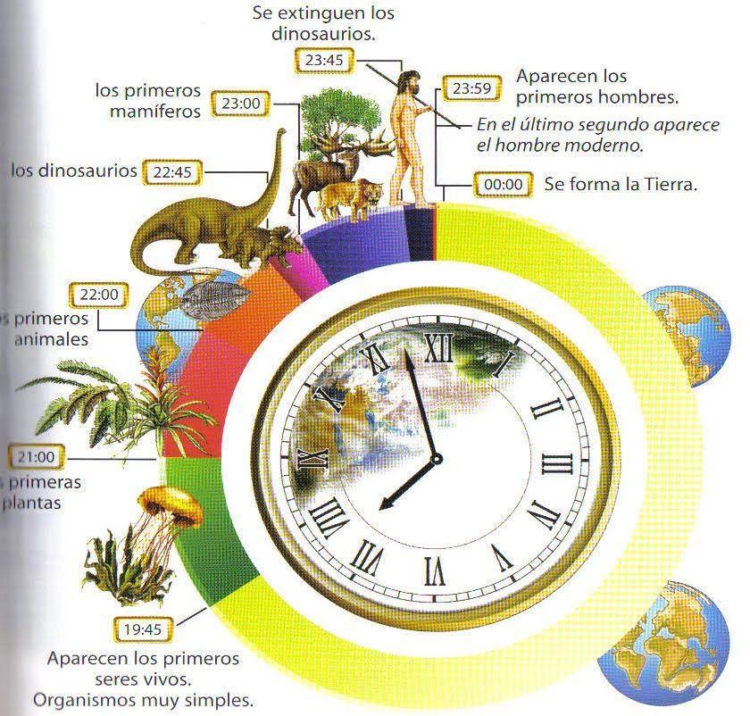 Geoteo La Breve Historia Del Mundo En Imágenes Origen De La Tierra Ciencias De La Tierra Evolucion De La Vida
