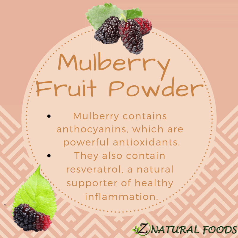 Mulberry Fruit Powder Raw Non Gmo From Fresh Mulberries High