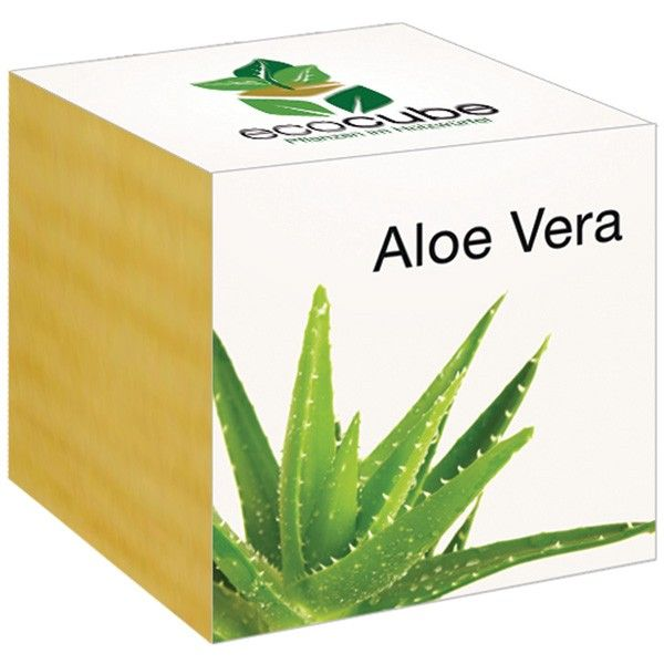 Aloe Vera Im Holzwurfel Von Ecocubealoe Vera Im Holzwurfel Bei