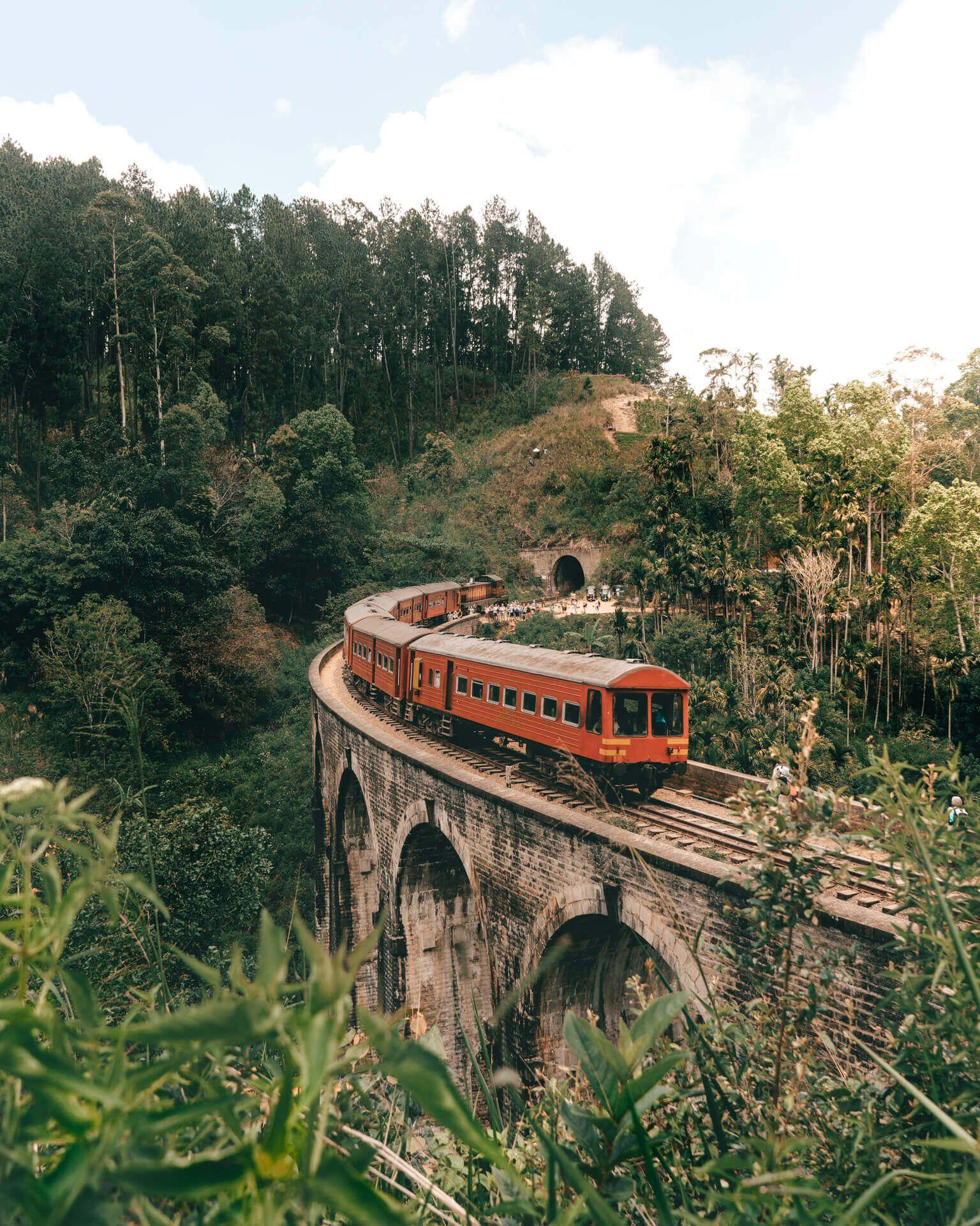 9 choses que vous DEVEZ faire au Sri Lanka – Attractions à voir absolument au Sri Lanka