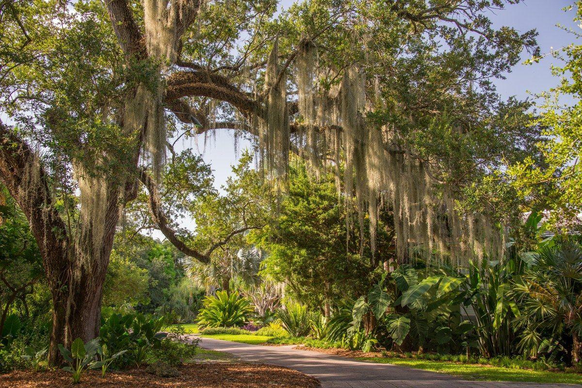 Fairchild Tropical Botanic Garden, Miami - Sports-Outdoors Review #botanicgarden