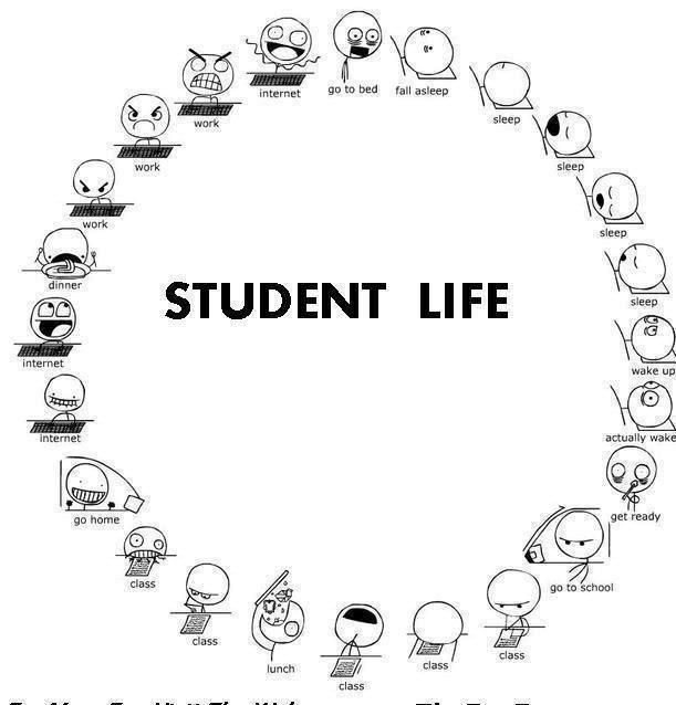 Student Life ~ Probably true